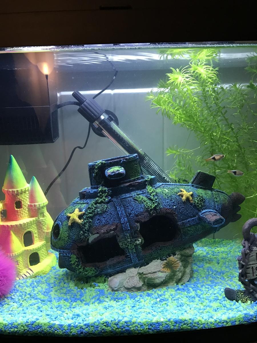 Freshwater fish tank ammonia levels - Thanks