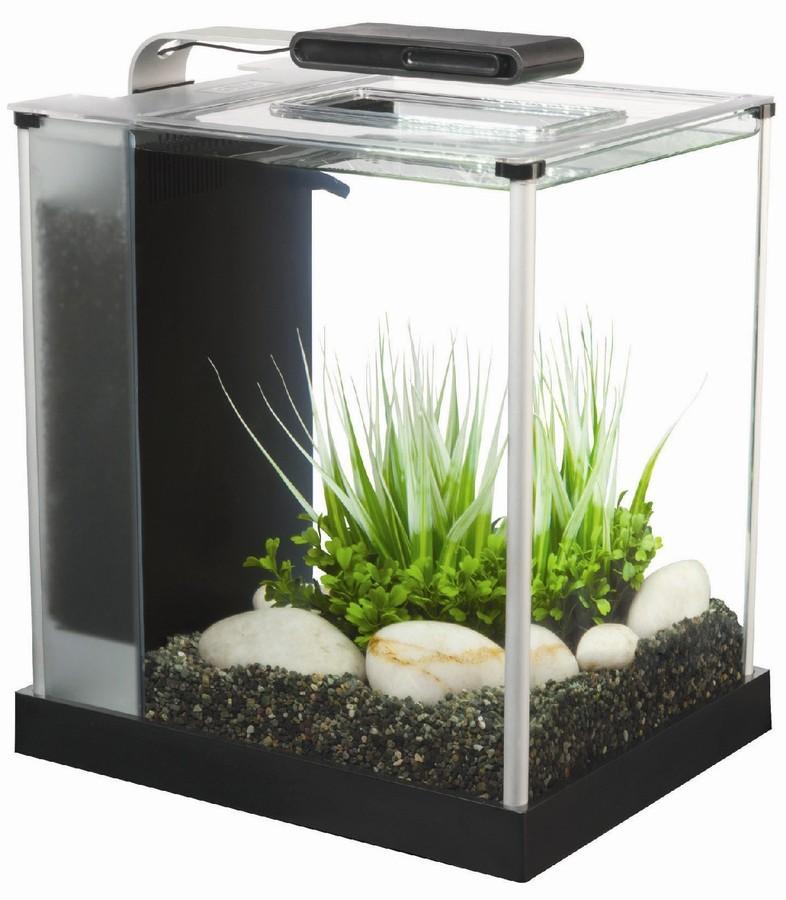 Fluval tanks for bettas chi or spec my aquarium club for Fluval chi fish tank