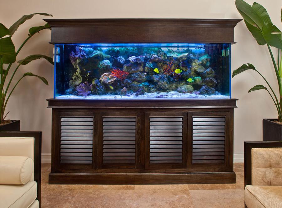 best decorative marine aquarium for living room in kolkata | my