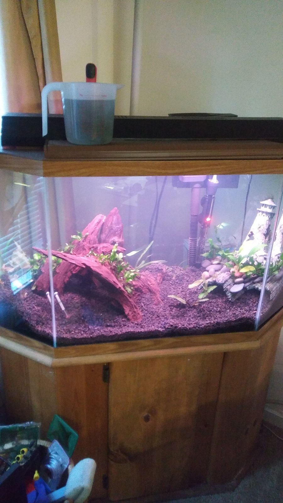 Setting up 40 gallon tank how much gravel do i need my for How many gallons is my fish tank