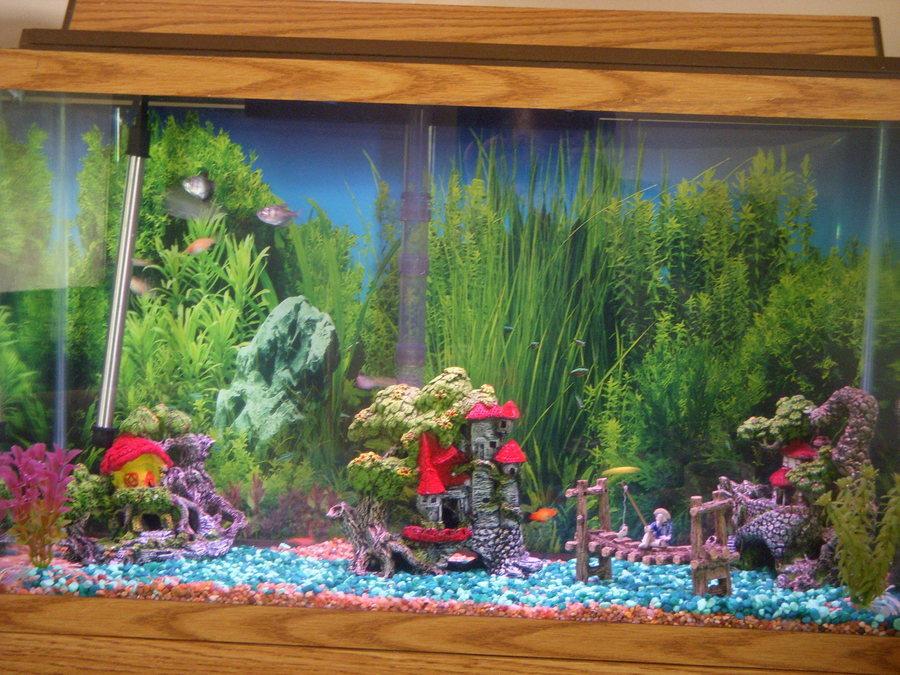 Christmas Decorations For The Aquarium? OK, This One Is Goin... | My Aquarium Club
