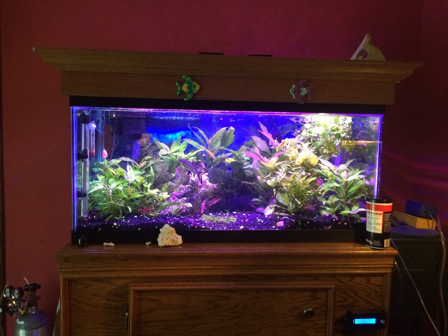 Synthetic filter media safe my aquarium club for Distilled water for fish tank