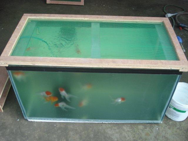 140 Gallon Tank Is Bowing - Is This Okay?   My Aquarium Club