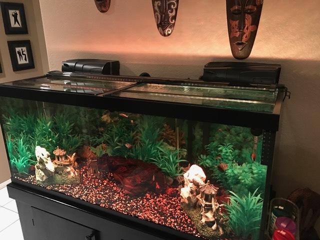 EPD Aquarium Fish Tank Sponge Filter Medium
